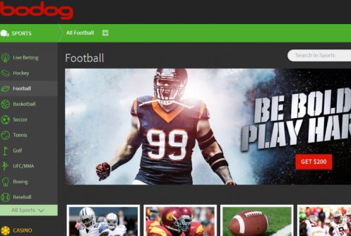 Bodog Review of Sportsbook