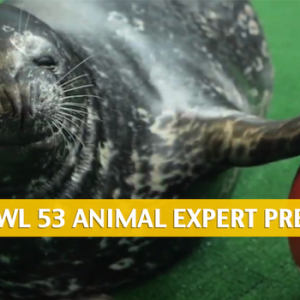 Animal Super Bowl Predictions and Picks 2019
